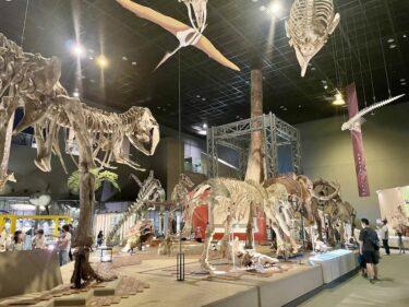 【連携】神奈川県立生命の星・地球博物館を見学しました
